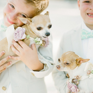 Ring bearers with pups