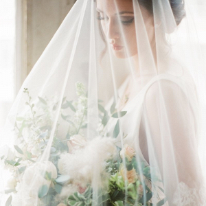 Elegant veiled bride