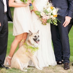 The most adorable bridal party photo ever, with the couple's dog!