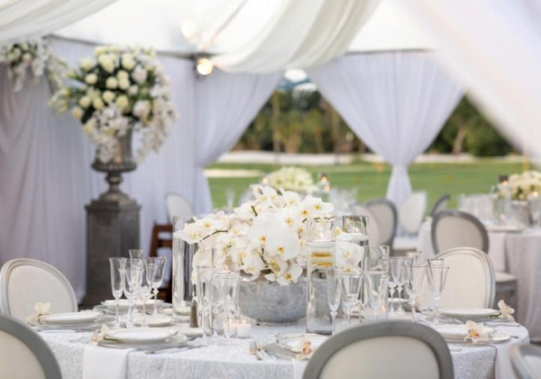 White orchid centerpiece
