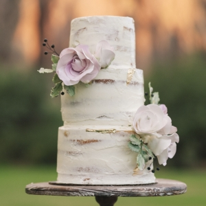 Nearly Naked Cake