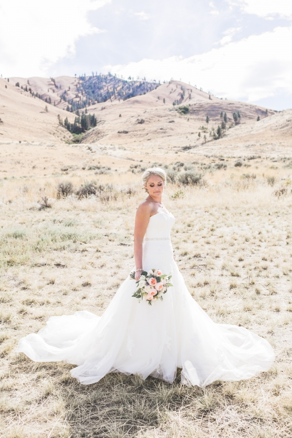 Bridal Portrait With Fanned Out Dress