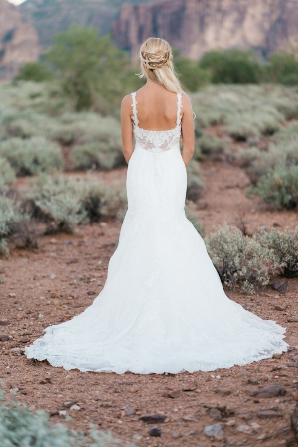 Back View Of Bride's Gown