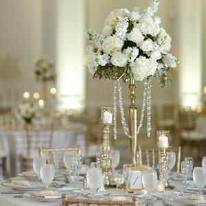 Glamorous reception