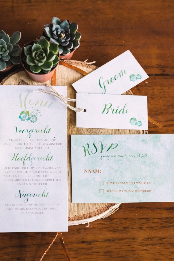 Watercolor invitations with succulents