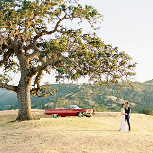 Dramatic California wedding portrait