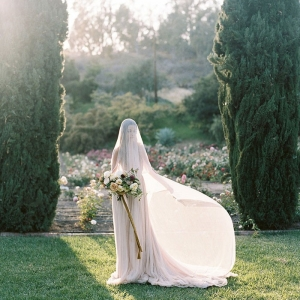 Ethereal Veiled Bridal Portraits in a Spring Rose Garden