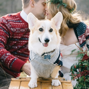 Adorable Bridal Portraits with a Corgi in a Holiday Sweater