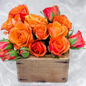English Garden Wedding - orange floral centerpiece