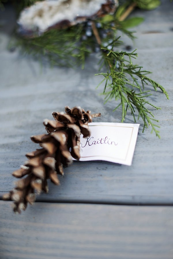 Rustic-Winter-Elopement-pine-cone-place-card