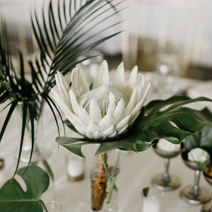 Tropical protea wedding centerpiece