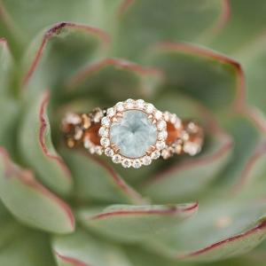 succulent-ring-shot-casey-hendrickson-photography