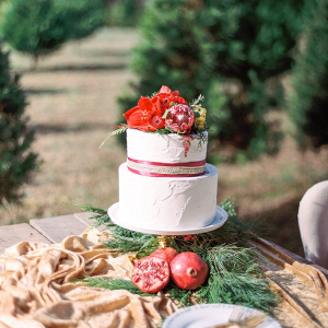 Holiday wedding cake