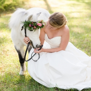 mini-horse-wedding-portrait