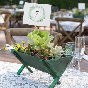 Succulent Planter Centerpieces