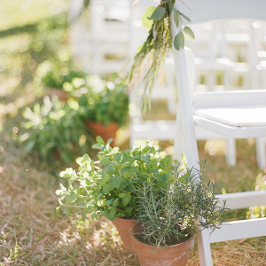 Herb plant ceremony decor