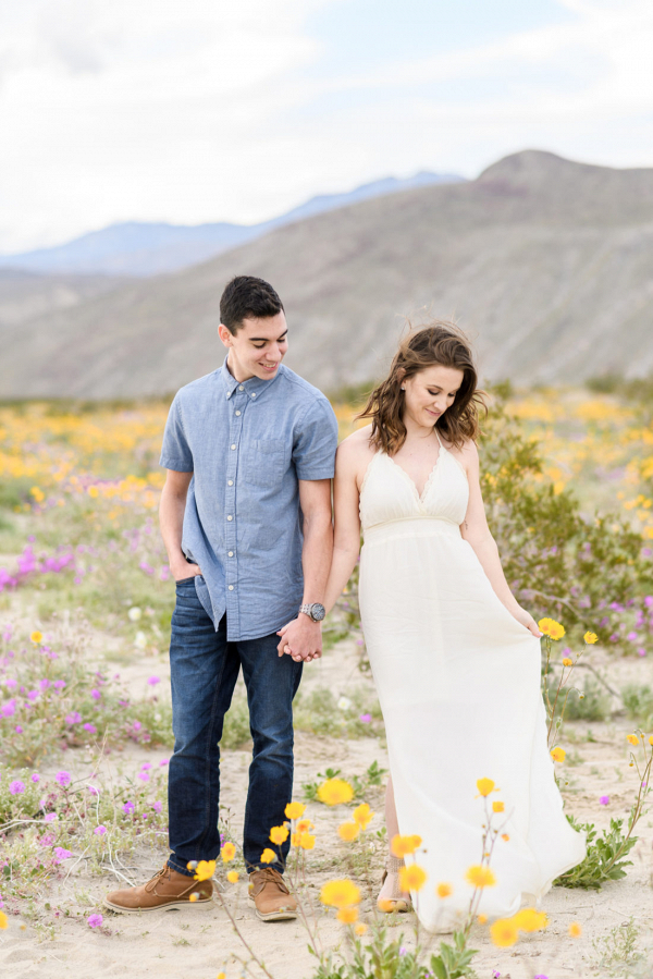 California state park engagement inspiration