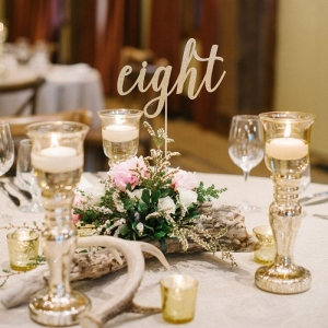 Gold Calligraphy Table Numbers | Canmore Mountain Wedding at Silvertip Resort