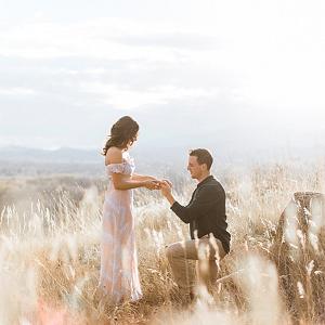 Proposal in a field