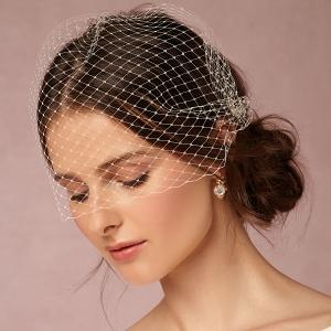 romantic Birdcage Veil