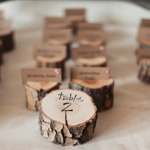 The cutest wood slices made into escort cards!