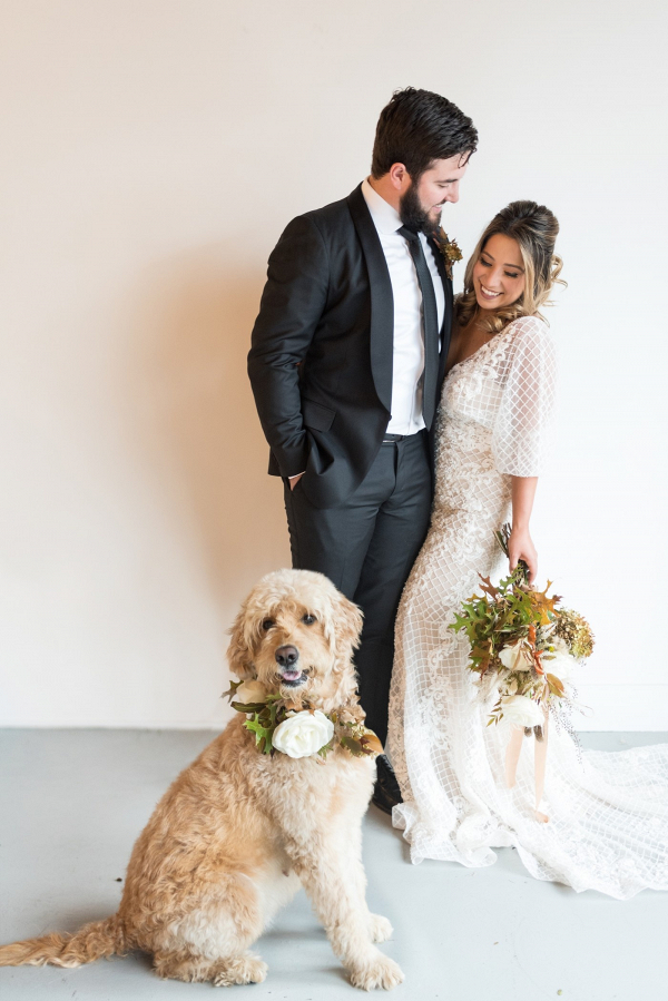 Modern wedding couple with dog in floral collar