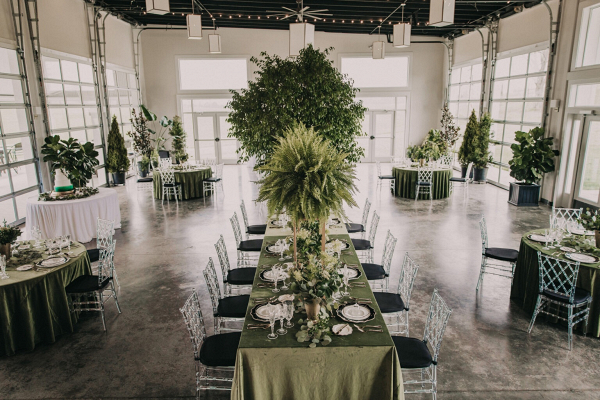 Green reception with potted plants