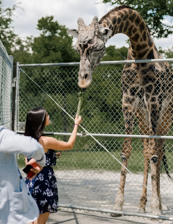 Zoo proposal