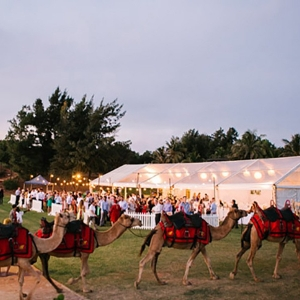 Marquee On Cable Beach With Camels
