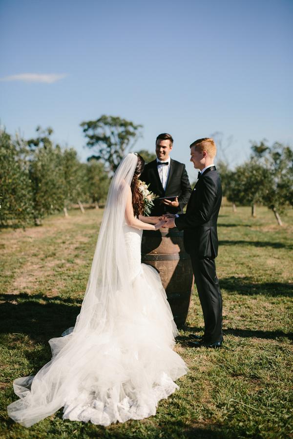 Olive Grove Wedding Ceremony