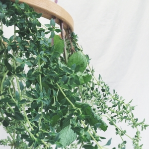 Fresh Herb Chandelier Tutorial