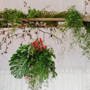 Hanging Monstera Deliciosa At Wedding