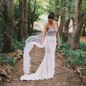 Bride In Wedding Dress With Silver Bodice