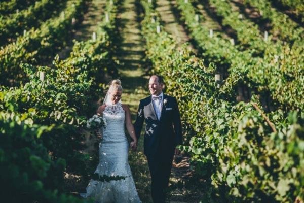 Newlyweds In Vineyards