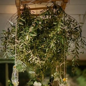 Hanging Olive Branch Decor