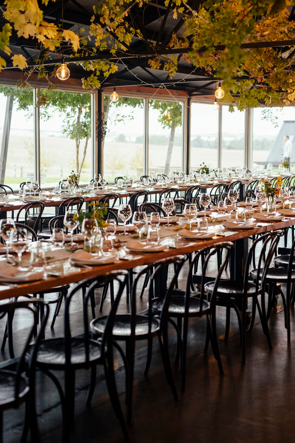 Wedding reception with fall leaf canopy
