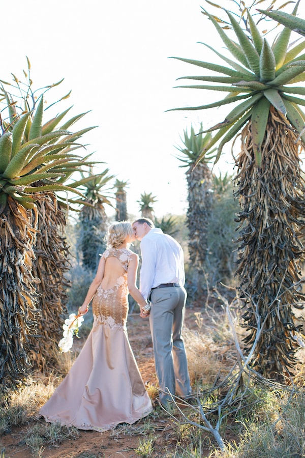 Bushveld Bride and Groom