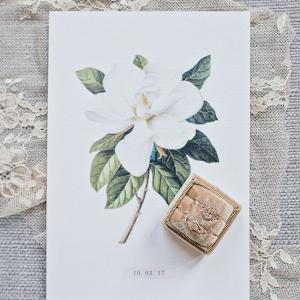 Rings in Velvet Box with Botanical Print
