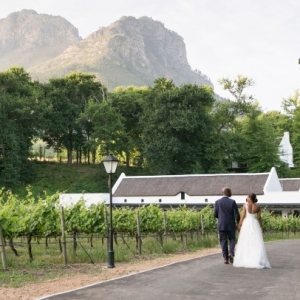 South African vineyard venue