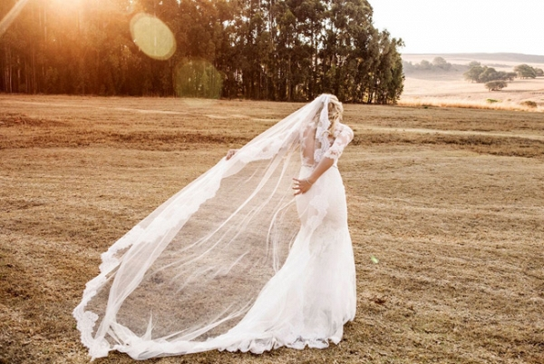 Cathedral Wedding Veil with Lace Trim