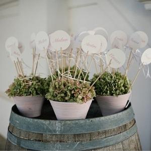 Pot Plant Escort Detail