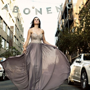 Silver Swallow  wedding dress