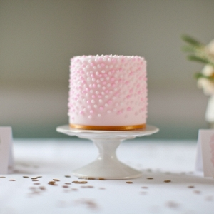 Pink Mini Wedding Cake