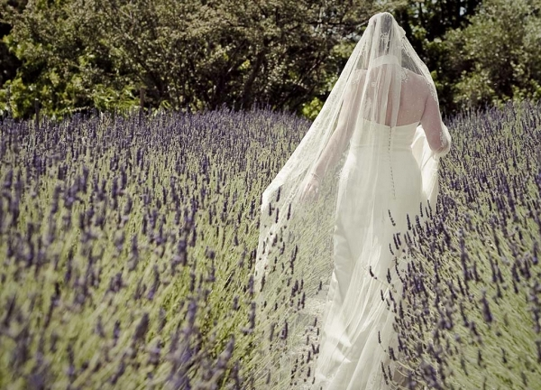 Bride in Field of Lavender