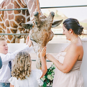 Wedding giraffe