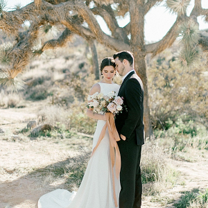 Modern Joshua Tree elopement