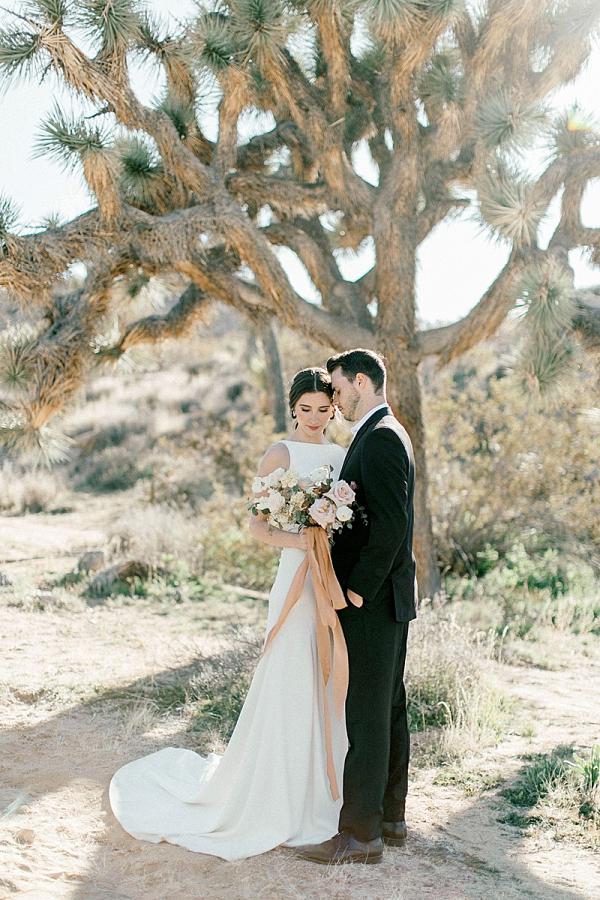 Modern Joshua Tree elopement