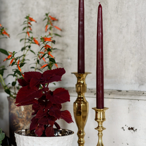 Candles on candlesticks
