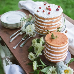 Naked Wedding Cake Upscale Orchard Wedding DiBlasio Photography