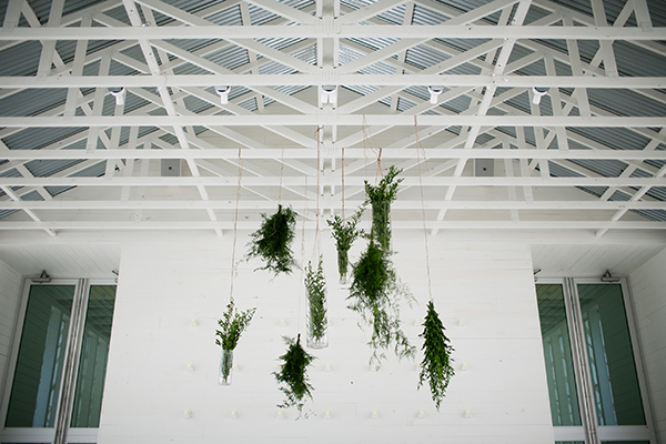 Suspended Greenery